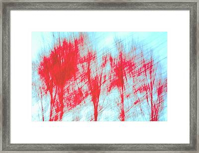 Framed Print featuring the photograph Breezy Moment by Ari Salmela