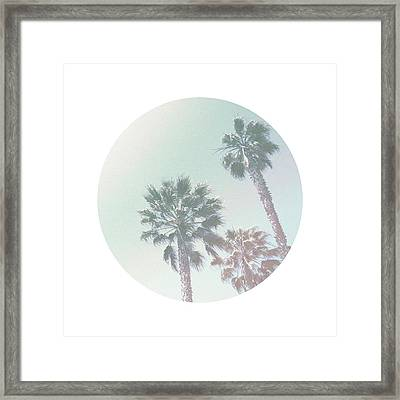 Breezy Palm Trees- Art By Linda Woods Framed Print by Linda Woods