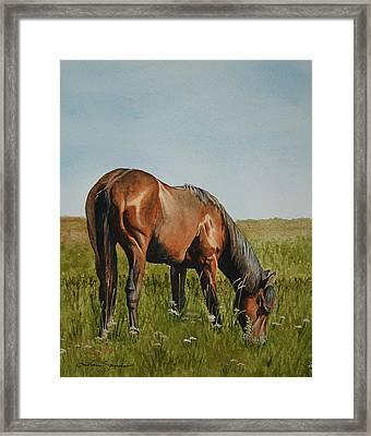 Breezy Framed Print by Tina  Sander