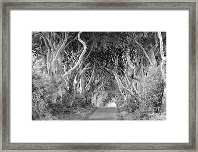 Bregagh Road Framed Print by Juergen Klust