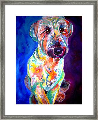 Briard - Albert Framed Print by Alicia VanNoy Call