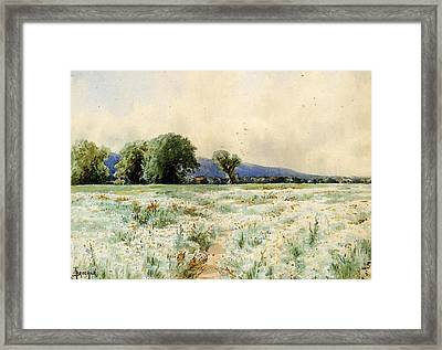 Bricher Alfred Thompson The Daisy Field Framed Print