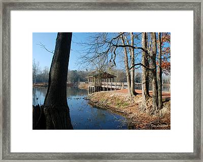 Brick Pond Park Framed Print