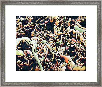 Bricolage With Cabbage Framed Print