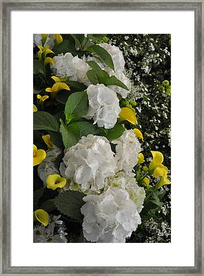 Bridal Cascade Framed Print by Vijay Sharon Govender