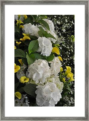 Bridal Cascade Framed Print by Vijay Sharon Govender