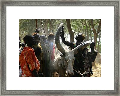 Bride Price Framed Print by Irene Abdou