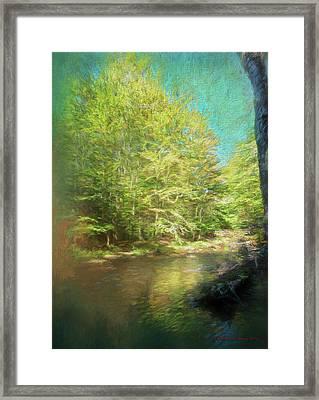 Bridge And Creek Framed Print