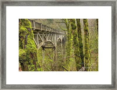 Bridge At Latourell Falls Oregon Framed Print
