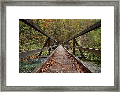 Framed Print featuring the photograph Bridge by Davor Zerjav
