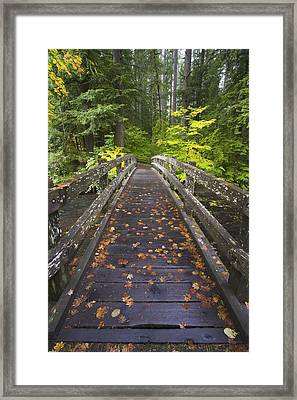 Bridge In A Park Framed Print by Craig Tuttle