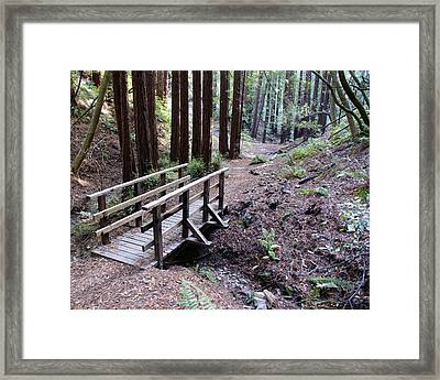 Bridge In The Redwoods Framed Print by Ben Upham III
