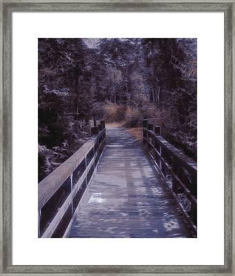 Bridge In The Shenandoah Framed Print by Susan  Epps Oliver