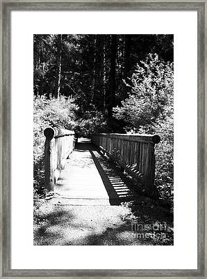 Framed Print featuring the photograph Bridge In Woods by Yulia Kazansky