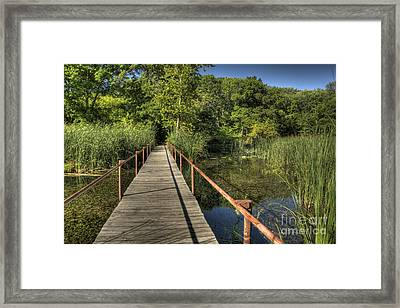 Framed Print featuring the photograph Bridge Into The Forest At Lake Murray by Tamyra Ayles