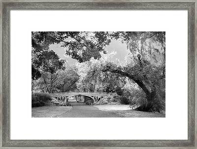Bridge No 28 Framed Print by Jessica Jenney