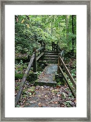 Bridge Of Dreams Framed Print by Walt Reece