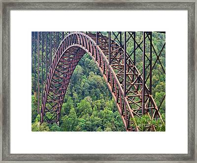 Bridge Of Trees Framed Print