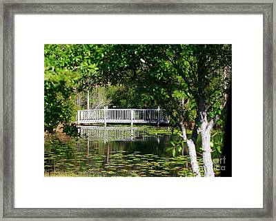 Framed Print featuring the photograph Bridge On Lilly Pond by Lori Mellen-Pagliaro