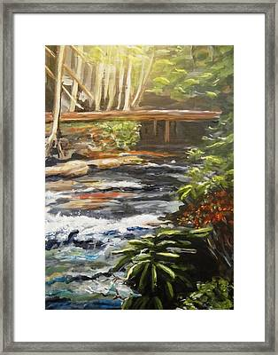 Bridge Over The Trout Stream Framed Print
