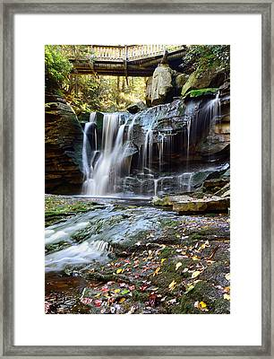 Bridge To Elakala Framed Print