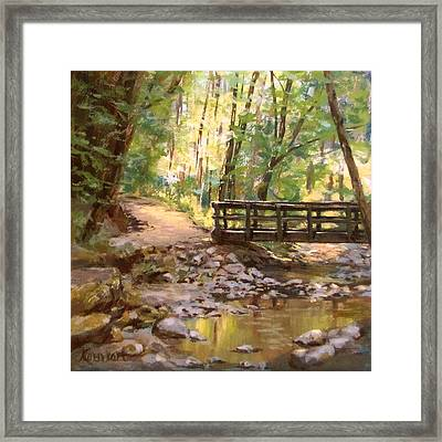Bridge To The Falls Framed Print