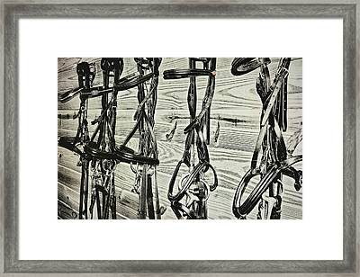 Bridled Dressage Framed Print