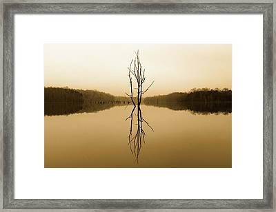 Framed Print featuring the photograph Briery Creek  by Alan Raasch