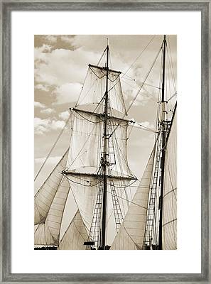 Brigantine Tallship Fritha Sails And Rigging Framed Print by Dustin K Ryan