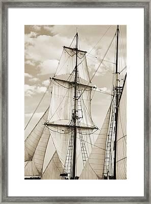 Brigantine Tallship Fritha Sails And Rigging Framed Print by Dustin K Ryan