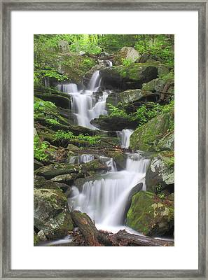 Briggs Brook Waterfall New England National Scenic Trail Framed Print by John Burk