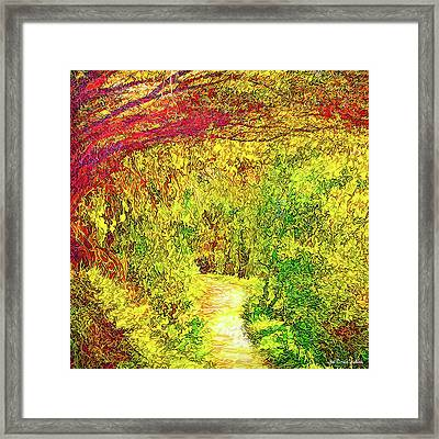 Bright Afternoon Pathway - Trail In Santa Monica Mountains Framed Print
