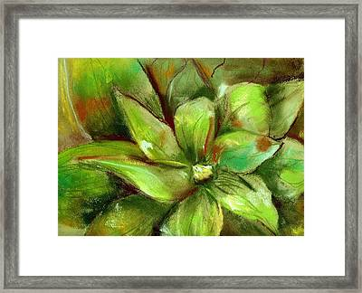 Bright Agave Framed Print by Marilyn Barton