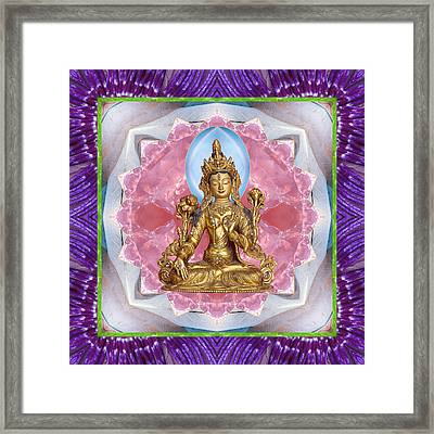 Bright Ally Framed Print by Bell And Todd