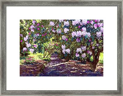 Bright And Beautiful Blossoms Of Spring Framed Print