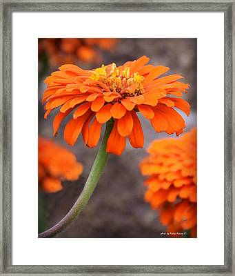 Bright And Beautiful Framed Print by Kathy M Krause