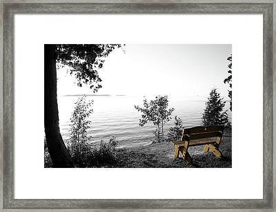 Bright Bay Bench Framed Print by Dylan Punke