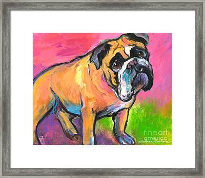 Bright Bulldog Portrait Painting  Framed Print