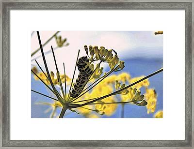 Bright Caterpillar Framed Print
