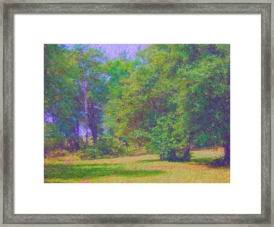 Bright Day Framed Print by Alexis Baranek