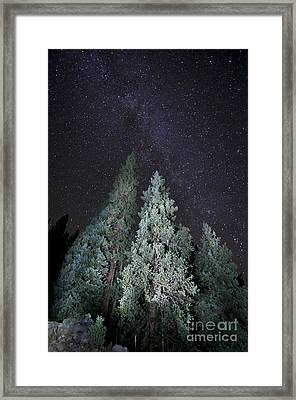 Bright Night Framed Print by Jeff Kolker