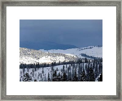Framed Print featuring the photograph Bright Patch Of Sunshine by Will Borden