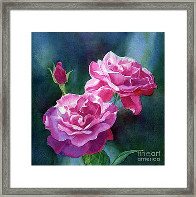 Bright Red Violet Roses With Dark Background Framed Print by Sharon Freeman