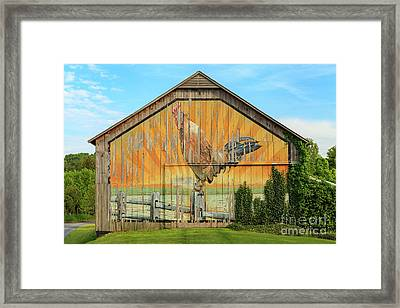 Bright Rooster Barn Framed Print