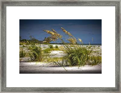 Bright Shore Framed Print