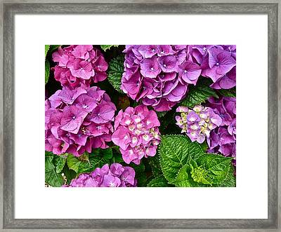 Bright Spot  Framed Print