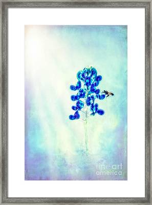 Bright Spring Day Framed Print