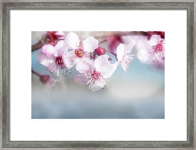 Bright Spring Framed Print