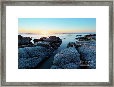 Bright Sunset Framed Print by Masako Metz
