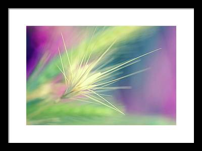 Growth Digital Art Framed Prints
